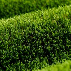 header-grass-300x300